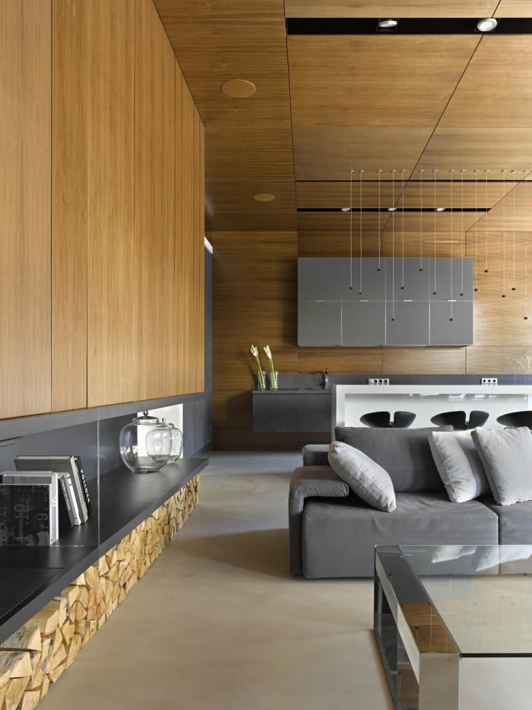 interioare-case-moderne-3