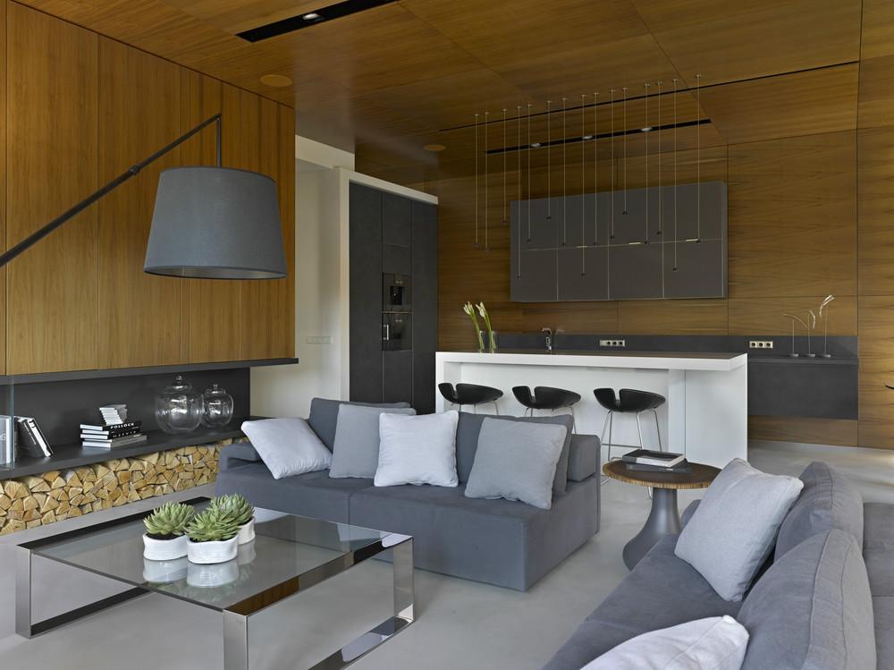 interioare-case-moderne-6