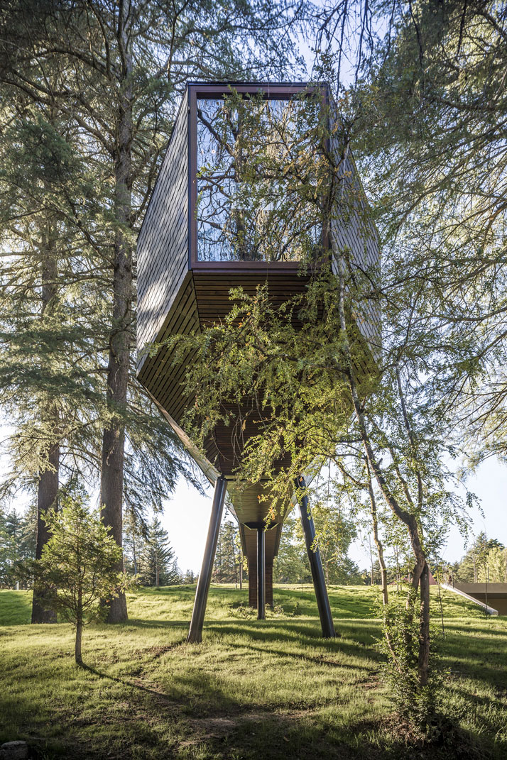casa din copac - amintiri din copilarie amenajari interioare pentru adulti