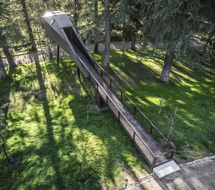 casa din copac amenajari exterioare si acces