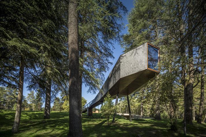 casa-din-copac-amenajari-exterioare-8