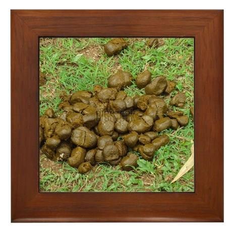 Rame_tablouri_fresh_horse_dung_on_ground_framed_tile