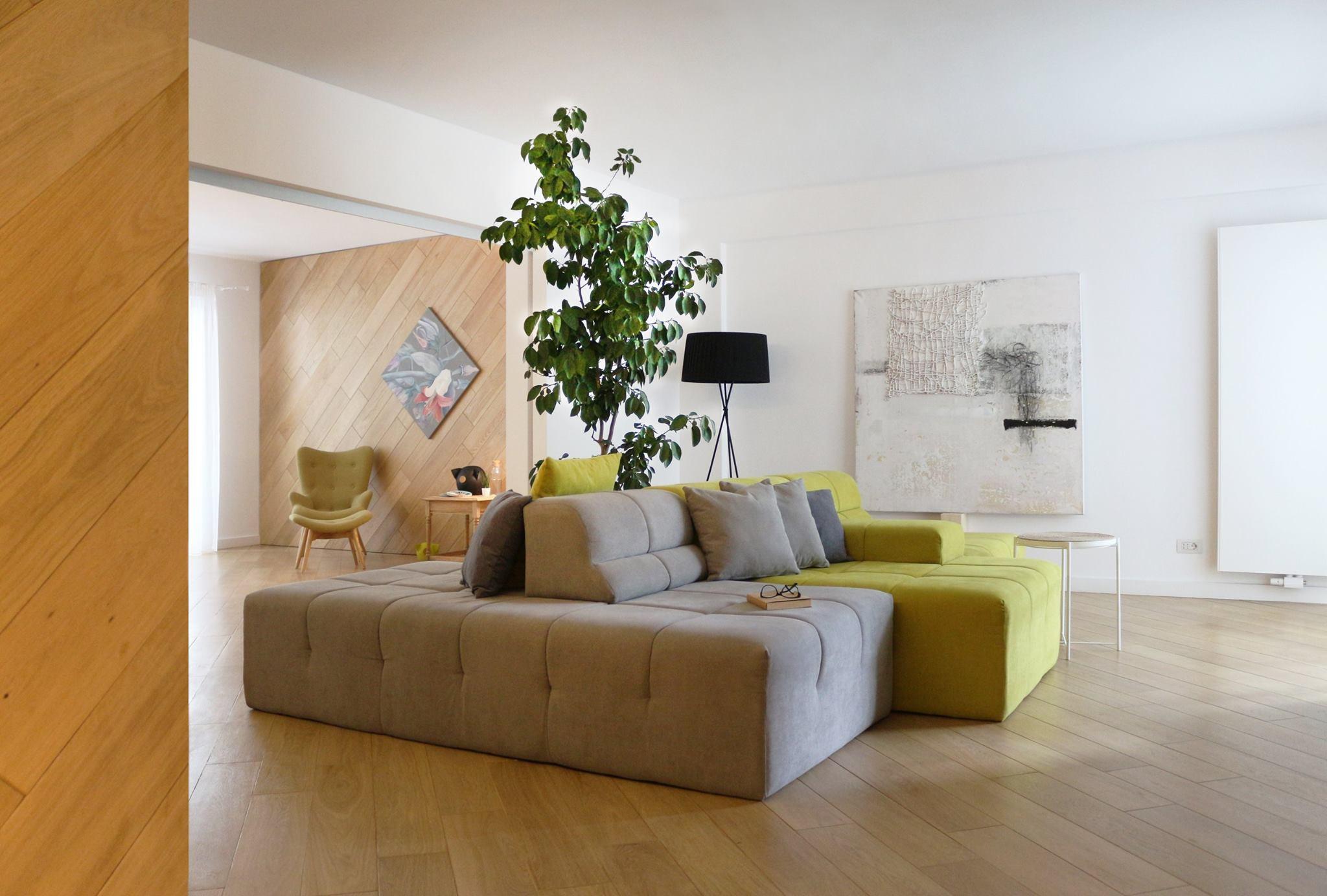 Elemente arhitecturale living